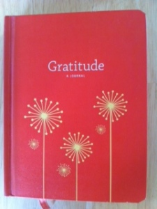 Express your gratitude daily in this compact, hardcover Gratitude journal.